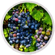 Grapes Ready For Harves Round Beach Towel