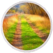 Grass And Shadows Round Beach Towel