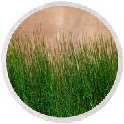 Grass And Stucco Round Beach Towel