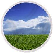 Grass In A Field, Ireland Round Beach Towel