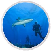 Gray Reef Shark With Divers, Papua New Round Beach Towel by Steve Jones