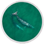 Gray Whale Mother And One-year-old Calf Round Beach Towel