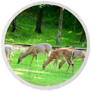 Grazing Doe Round Beach Towel