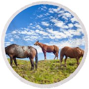 Grazing Round Beach Towel