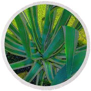 Great Agave Round Beach Towel