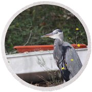 Great Blue Heron - Chicken Of The Sea Round Beach Towel