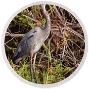 Great Blue Heron And Turtle Round Beach Towel