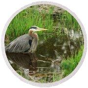 Great Blue Heron At The Marsh Round Beach Towel