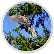Great Blue Heron Cover Up Round Beach Towel