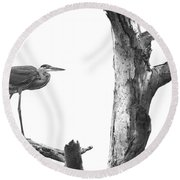 Great Blue Heron - Dead Pine Round Beach Towel