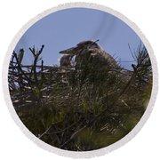 Great Blue Heron In Nest Round Beach Towel