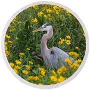 Great Blue Heron In The Flowers Round Beach Towel