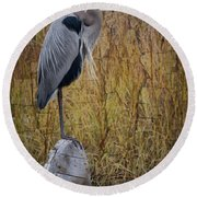 Great Blue Heron On Spool Round Beach Towel by Debra and Dave Vanderlaan