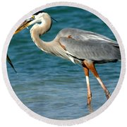 Great Blue Heron With Catch Round Beach Towel