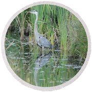 Great Blue Heron With Reflection Round Beach Towel