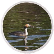 Great Crested Grebe With Breakfast Round Beach Towel
