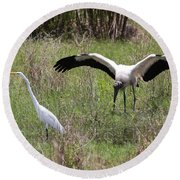 Great Egret And Wood Stork In The Marsh Round Beach Towel