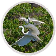 Great Egret In Flight Round Beach Towel