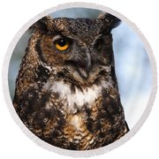 Great Horned Owl Portrait Round Beach Towel
