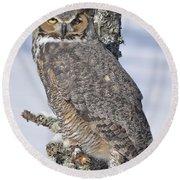 Great Horned Owl Portrait Round Beach Towel