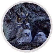 Great Horned Owl Twins Round Beach Towel