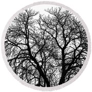 Great Old Tree Round Beach Towel