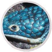 Green Arboreal Alligator Lizard Round Beach Towel
