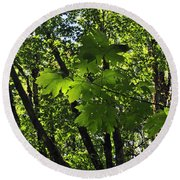 Green Canopy Round Beach Towel