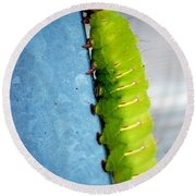 Green Caterpillar  Round Beach Towel