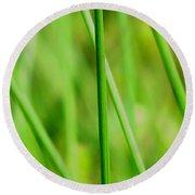 Green Green Grass Of Home Round Beach Towel