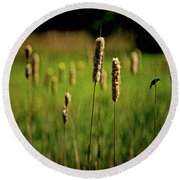 Green Grow The Rushes O Round Beach Towel