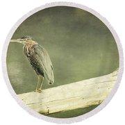 Green Heron On A Log Round Beach Towel