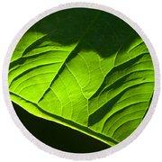 Green Leaf Round Beach Towel