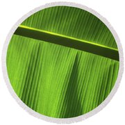 Green Leaf, Close-up Round Beach Towel