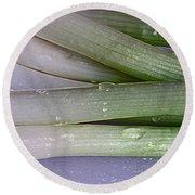 Green Onions Round Beach Towel