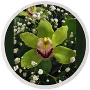 Green Orchid In Baby's Breath Round Beach Towel