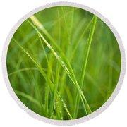 Green Prairie Grass Round Beach Towel