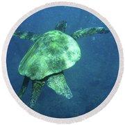 Green Sea Turtle 1 Round Beach Towel