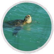Green Sea Turtle 4 Round Beach Towel
