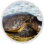 Green Sea Turtle Of Hawaii Round Beach Towel