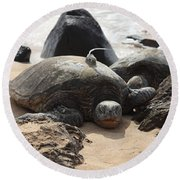Green Sea Turtle With Gps Round Beach Towel