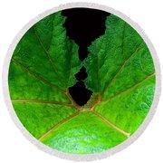 Green Spider Leaf Round Beach Towel