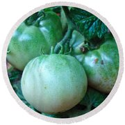 Green Tomatoes On The Vine Round Beach Towel