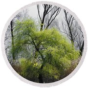 Green Tree And Pampas Grass Round Beach Towel