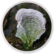 Green Turkey Tails Round Beach Towel