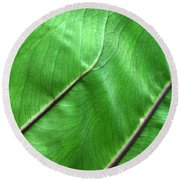 Green Veiny Leaf 2 Round Beach Towel