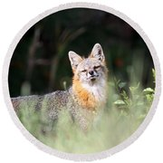 Grey Fox - The Man Round Beach Towel
