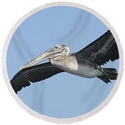 Grey Pelican Round Beach Towel