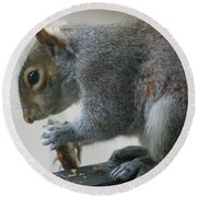 Grey Squirrel Dining Out Round Beach Towel