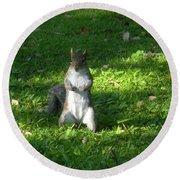 Greynolds Park Squirrel Round Beach Towel